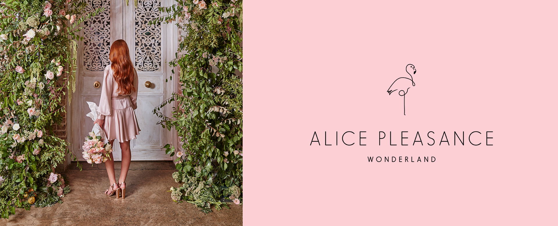 Alice Pleasance Wonderland