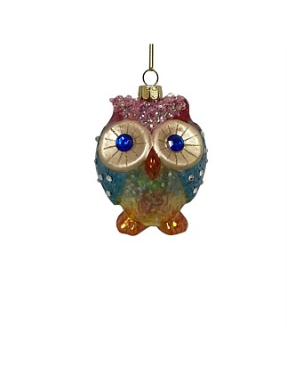 Orn-Rainbow Hoot Owl Multi