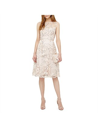 Phase Eight SABLE EMBROIDERED DRESS