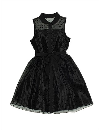 Mesh Dress with Flocked Spot Girls (8-14 Years)