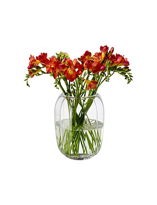 Coloured Delight Vase Lantern Clear