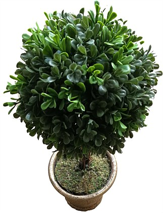 Potted topiary tree 45cm prelit battery operated