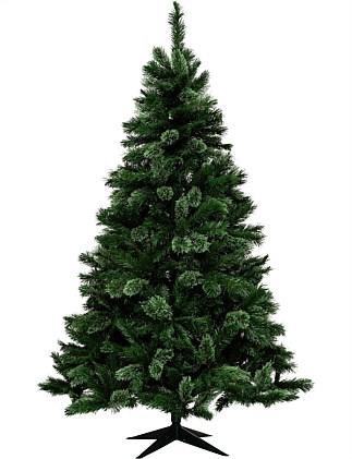 Christmas Tree Shop Hours.Christmas Tree Shop Christmas Trees Online David Jones